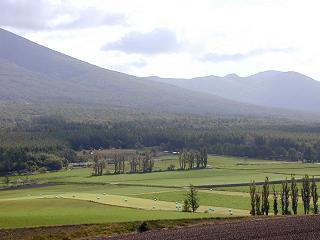 キャンプ場から眺めるベベルイの丘