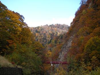 定山渓二見公園付近の紅葉