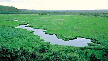 北海道絶景スポット コッタロ湿原展望台