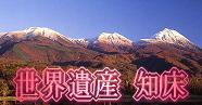 北海道 世界遺産 知床特集